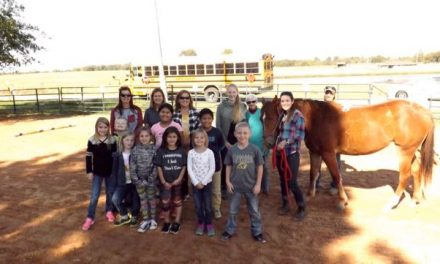 It was an Everett Elementary Equine Adventure!