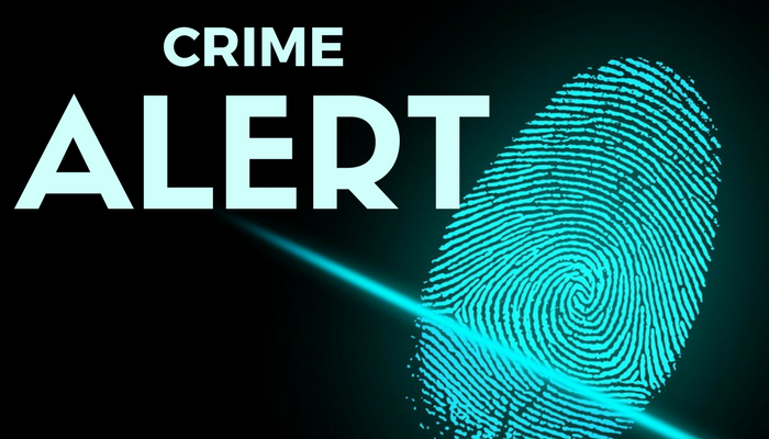 Lamar County Crime Alert