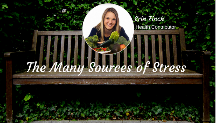 The Many Sources of Stress by Erin Finch