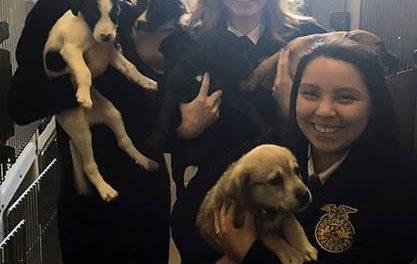 North Lamar FFA makes donation to animal shelter