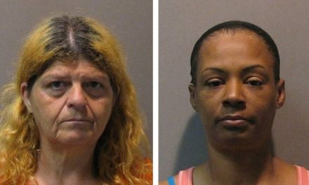 Two picked up on outstanding warrants