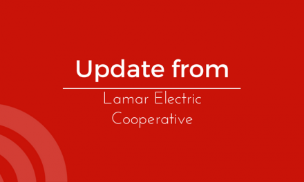 Snake Causes Electricity Disruption for Lamar County Residents