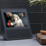 Alexa has a screen now with the Amazon Echo Show