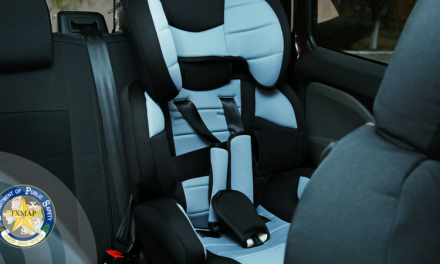 Leaving Children in the Car can be Deadly
