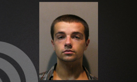 Parole violation leads to arrest this weekend