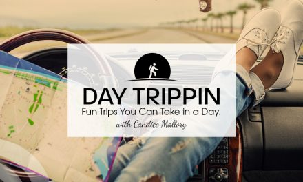 Urban Air in Rockwall, TX – Day Trippin' with Candice Mallory