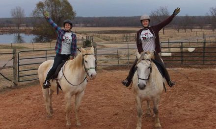 Local non-profit utilizes horses to help those with disabilities