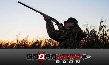 The wait is almost over, it's time for Dove Season