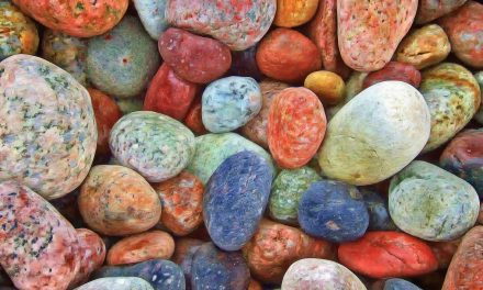 Gardening with Rocks – Master Gardener
