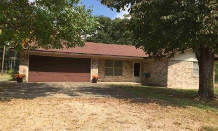 Home with 10 acres on FM 79 for sale