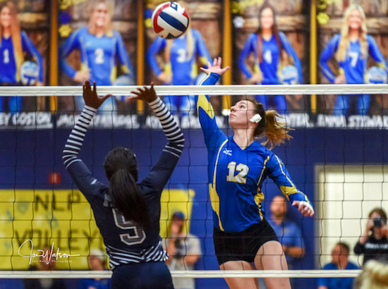 North Lamar Continues Win Streak over Ladycats