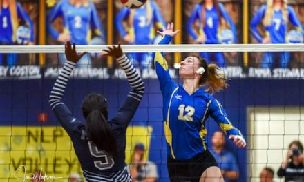 NL Continues Win Streak over Ladycats