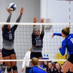 Playoff Win Drought Continues for Ladycats