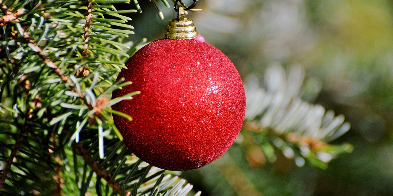 Tips to keep your real Christmas tree looking great all season