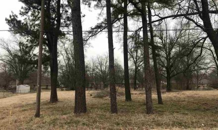 Lot for sale in perfect location to build your dream home