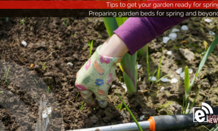 Preparing garden beds for spring and beyond    Tips and tricks