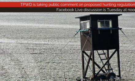 TPWD is taking public comment on proposed hunting regulations