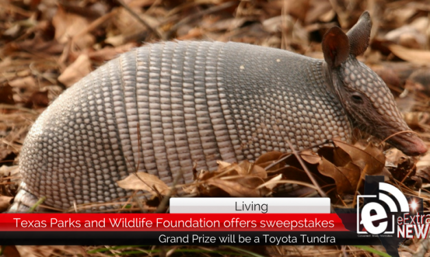 Texas Parks and Wildlife Foundation offers Toyota Tundra as grand prize