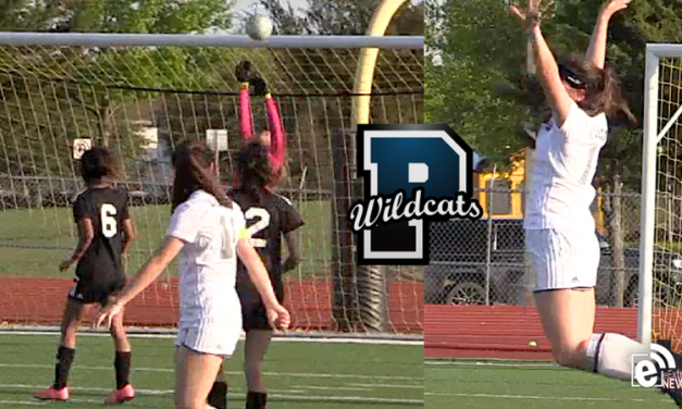 Ladycats bounce into area playoff round