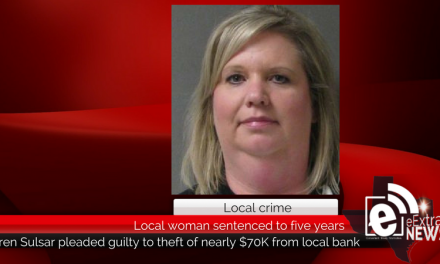 Local woman gets 5 years in prison for stealing from local bank