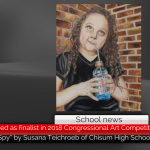 CHS student named as finalist in 2018 Congressional Art Competition