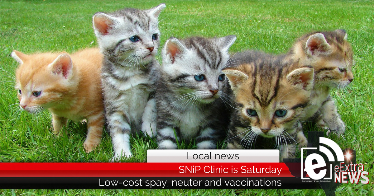 Location changed for low-cost spay and neuter in Paris clinic (SNiP) on Saturday