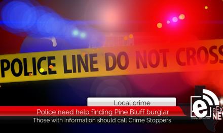 Police need help finding Pine Bluff burglar