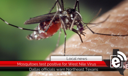 Mosquitoes test positive for West Nile Virus || Dallas officials warn Northeast Texans