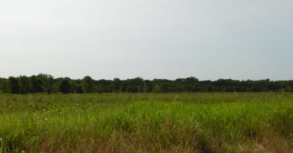 117.85 acres for sale in Prairiland School District