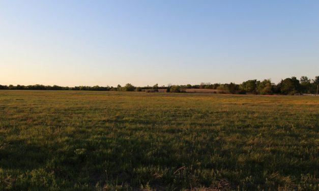 Cattle ranch land for sale near Paris, Texas
