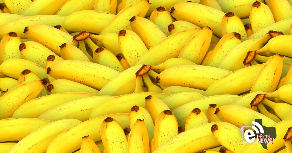 Free bananas at the Downtown Food Pantry