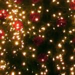 Downtown Christmas tree lighting event will happen Saturday, Nov. 17, 2018