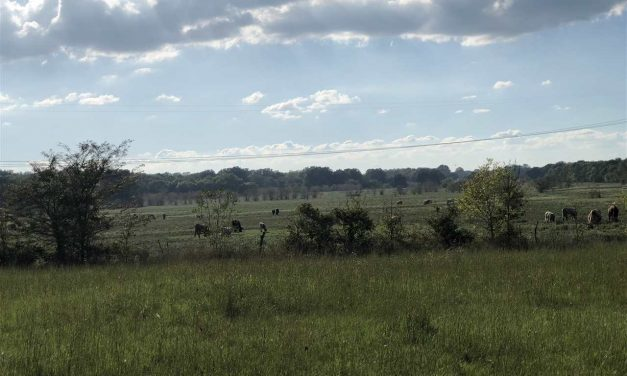 106 acres with home for sale in Pattonville, Texas || $489,000