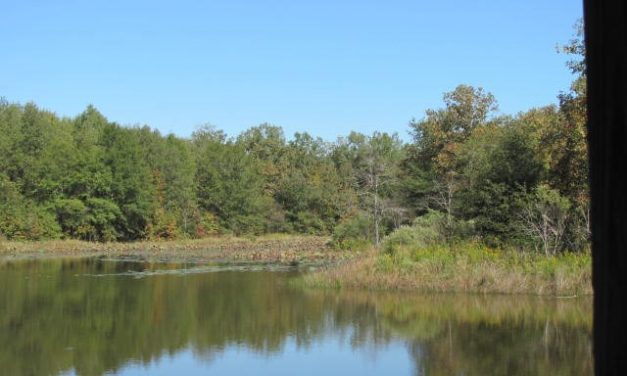 Land with private lake for sale Red River County, Texas || $210,000