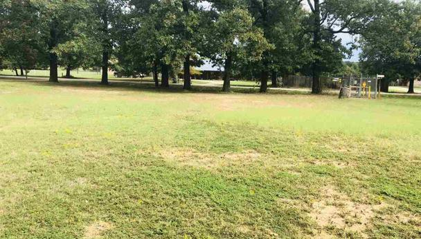Building lot for sale in Reno, Texas || $13,000