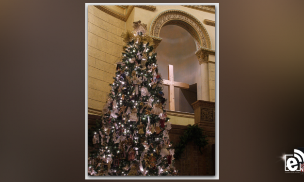 People Against Violent Crime to host 16th Annual Tree of Angels event