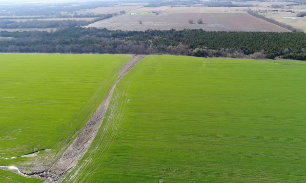 Large row crop farm for sale in Northeast, Texas || $1,871,440