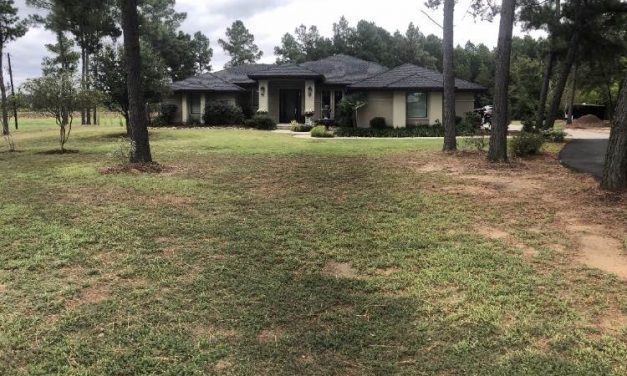 Three bedroom home for sale in Blossom, Texas || $395,900