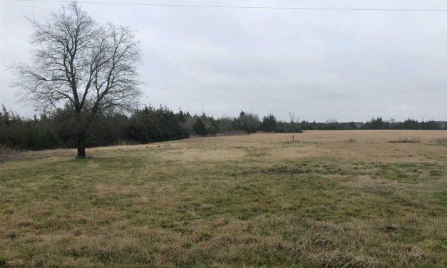 Acreage for sale in Brookston, Texas    $75,000