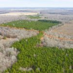 97 acres of land for sale in Detroit, Texas || $294,000