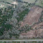 19.65 acres for sale in Bogata, Texas || $66,500