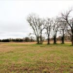 Country property for sale in Honey Grove, Texas || $25,000