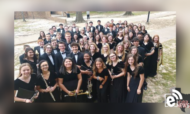 'Superior' ratings for NLHS Concert Band
