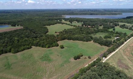 67 acres for sale in Paris, Texas || $331,315