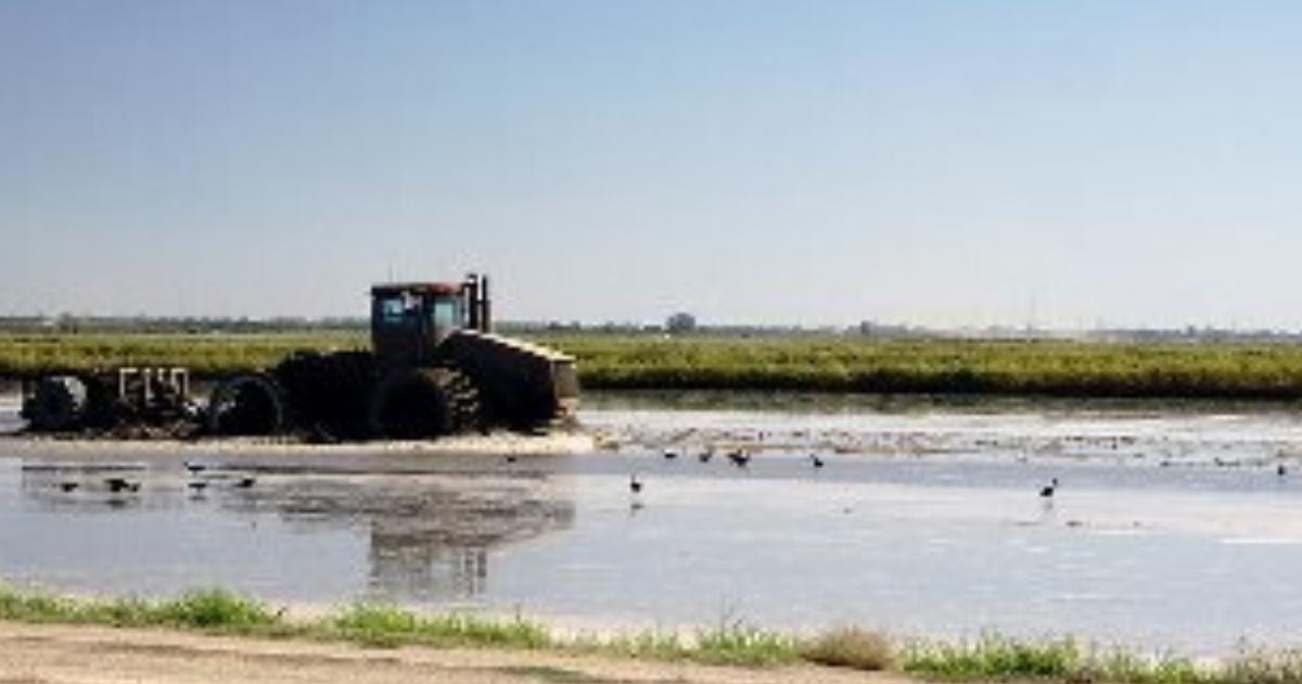 USDA Designates Lamar & Fannin Counties as Natural ...